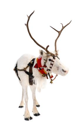 the science of christmas santa reindeer sleigh chimney